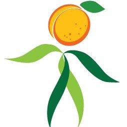 Wild Apricot